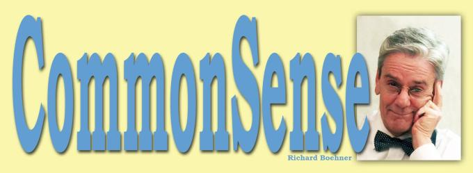LogoCommonSense2